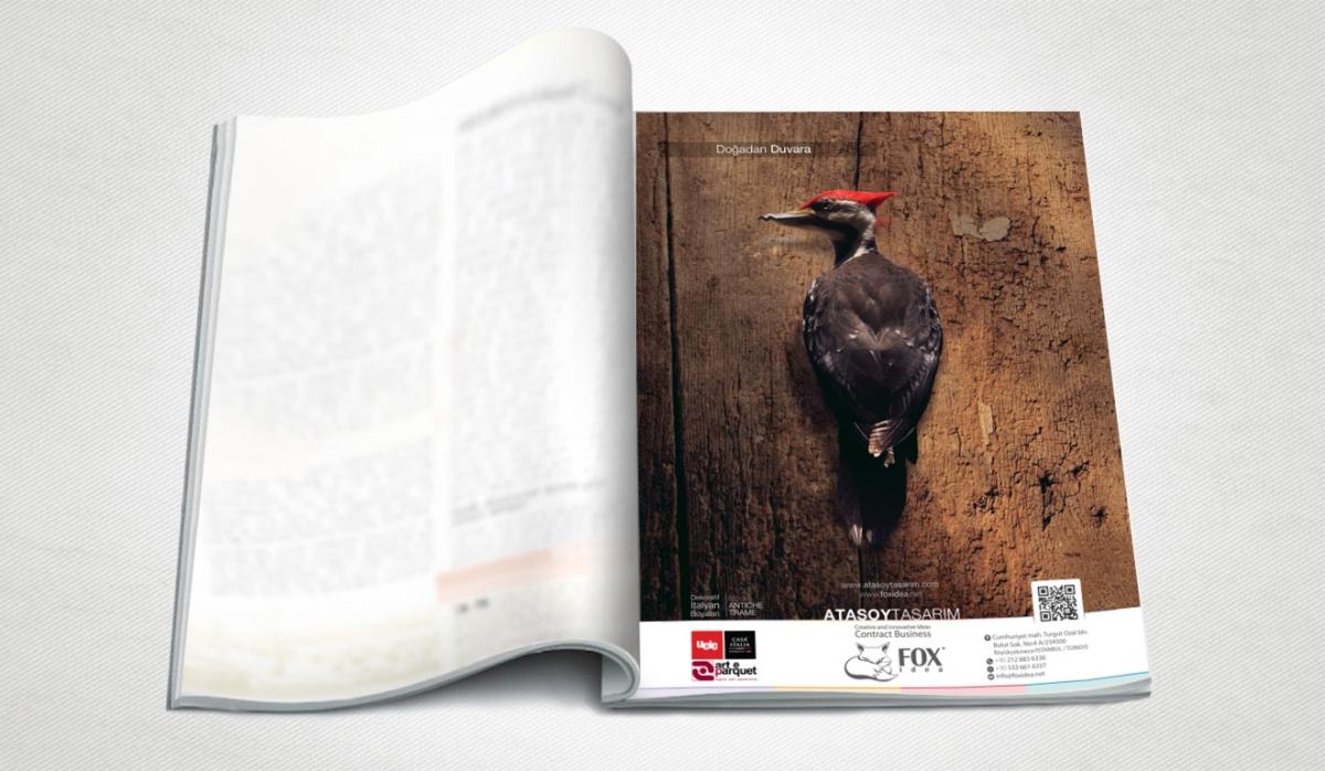 Fox Idea Magazine Ad - Graphic Design