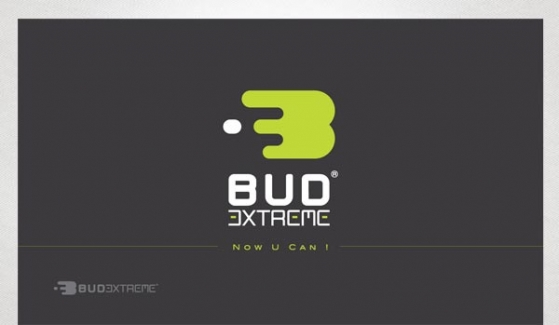 Bud Extreme Logo Design - Graphic Design