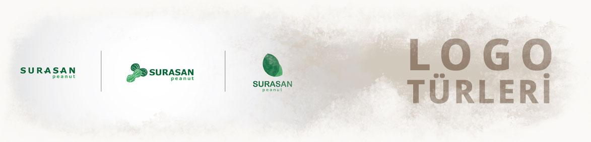 Logo çeşitleri